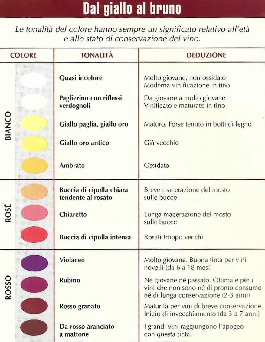 Significato-colore-vini