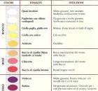Il significato del colore dei vini