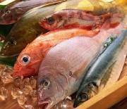 Scegliere e conservare il pesce